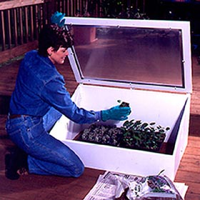 Cold Frame Woodworking Plan