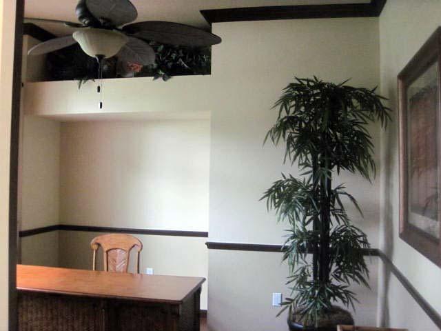 Colonial Contemporary Florida Mediterranean House Plan 50875
