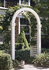 Arch-Topped Arbor