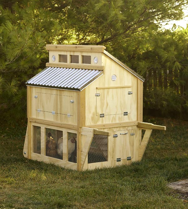 504884 - Portable Chicken Coop